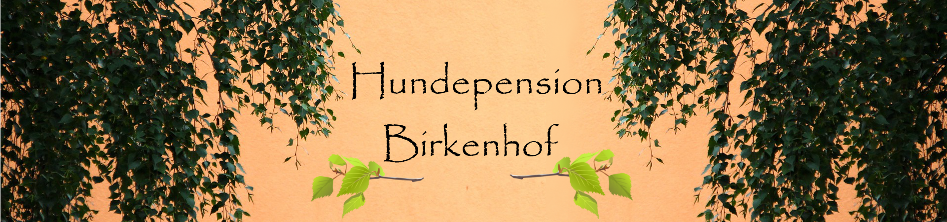 Hundepension Birkenhof